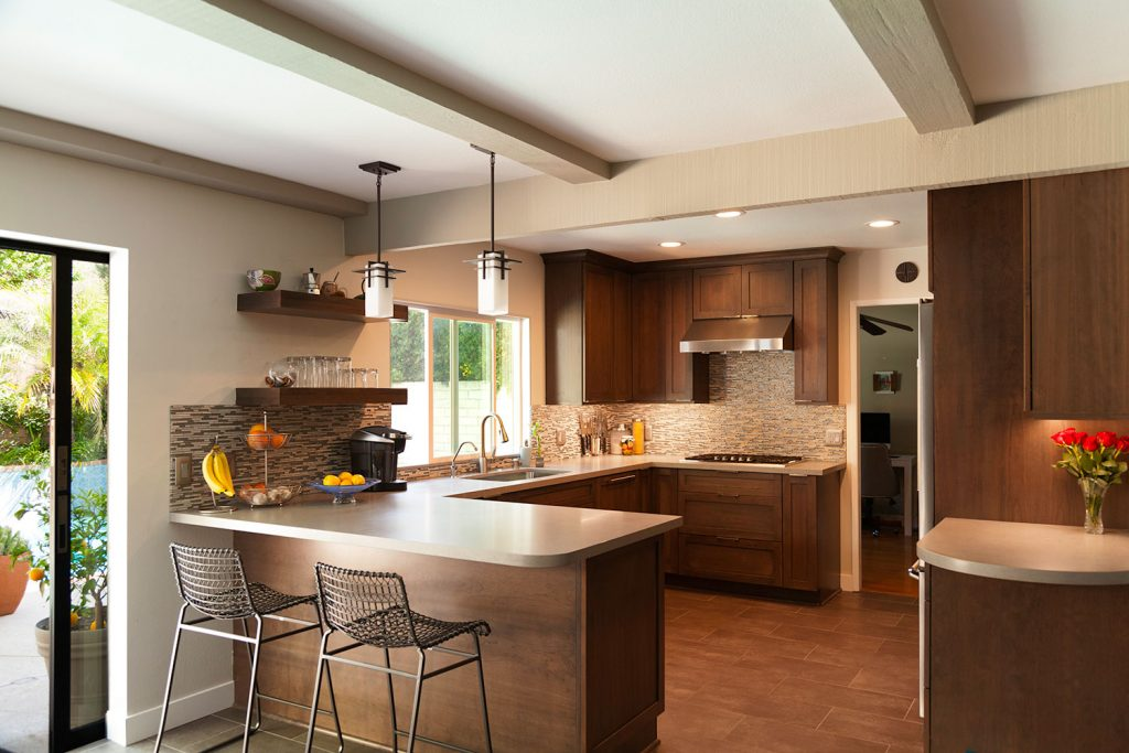 1-modern-dark-cabinets-kitchen-remodel